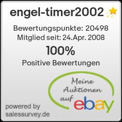 Auktionen und Bewertungen von engel-timer2002